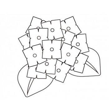 紫陽花のぬりえ(線画)イラスト素材 | イラスト無料・かわいいテンプレート
