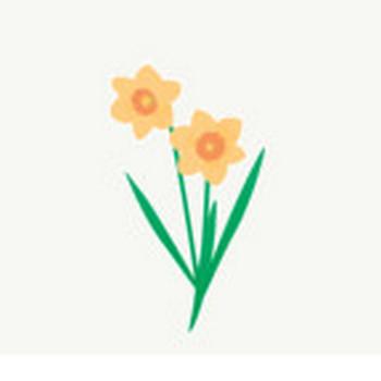 ラッパ水仙: 素材庭園(フリーイラスト素材集) ~花・動物・食べ物・人物・雑貨他