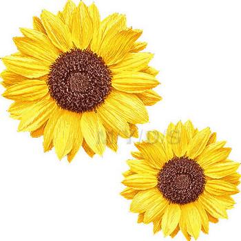 (向日葵の花)ヒマワリの花のイラスト・条件付フリー素材集