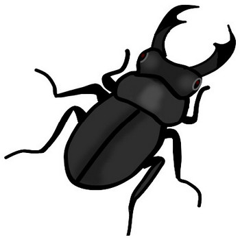 夏の昆虫・クワガタのイラスト