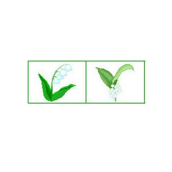 スズラン(鈴蘭)/素材1/花索引/無料【お花のアイコン館】