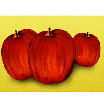 りんごイラストフリー - 無料で使えるかわいい果物素材 - チコデザ