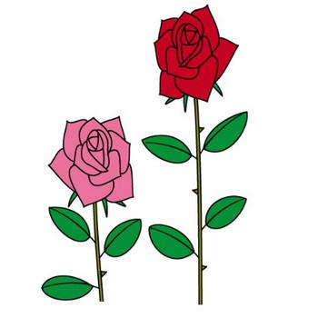 幼稚園児のイラスト・絵カード:バラのイラスト・絵カード
