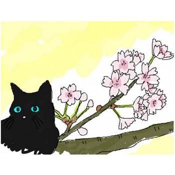 花の塗り絵を無料のイラストで親子一緒に楽しめるよ!!
