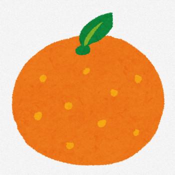 みかん・オレンジのイラスト(フルーツ) | かわいいフリー素材集 いらすとや