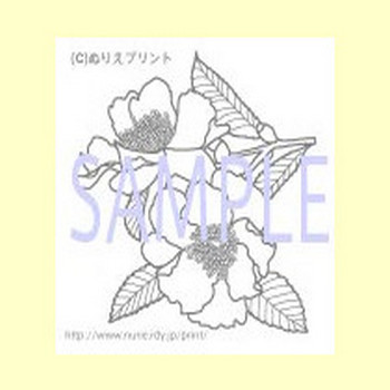 ぬりえ/無料/サザンカ/冬の花2/花の塗り絵