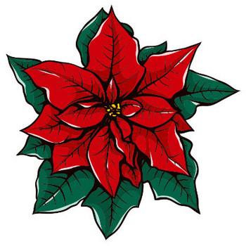 冬のイラストNo.075『ポインセチアの花』/無料のフリー素材集【花鳥風月】