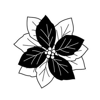 ポインセチアの白黒イラスト | かわいい無料の白黒イラスト モノぽっと
