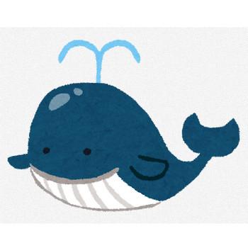 鯨のキャラクター | かわいいフリー素材集 いらすとや