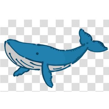 クジラのフリーイラスト素材