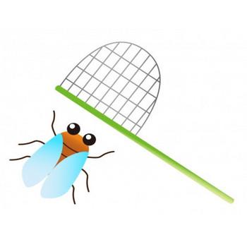 セミと虫取り網のイラスト素材 | イラスト無料・かわいいテンプレート