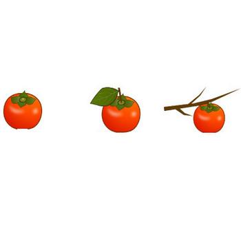 無料素材の『季節・行事素材のイラスト市場』秋の素材・柿、かきのイラスト