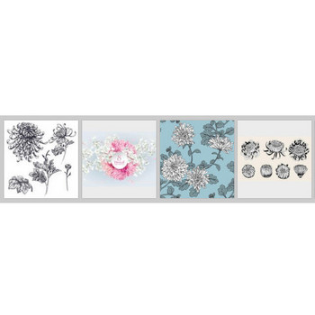 菊 に関するベクター画像、写真素材、PSDファイル | 無料ダウンロード
