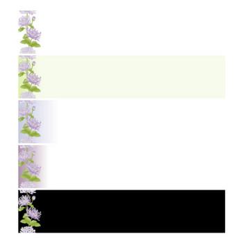 菊(紫)の壁紙