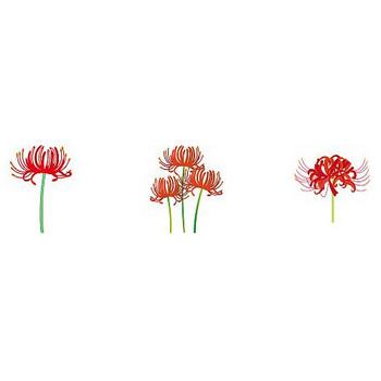 秋の花のイラスト2-花の無料イラスト素材-イラストポップ