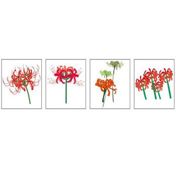 その他の花イラスト・画像「タ行~」/無料のフリー素材集【百花繚乱】