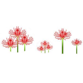 彼岸花・曼珠沙華イラスト素材フリー素材写真素材 素材屋じゅん秋の花jpg・gif薄橙色