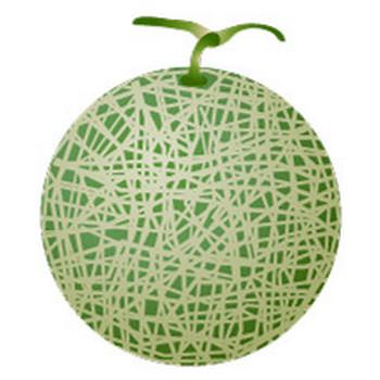 【まとめ】果物のフリーイラスト素材|イラストイメージ