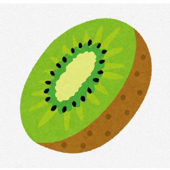 キウイのイラスト(フルーツ) | かわいいフリー素材集 いらすとや