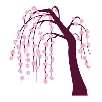 しだれ桜 | 花、植物イラスト Flode illustration (フロデイラスト)