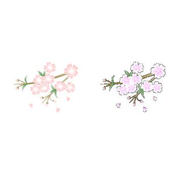 桜の素材-桜のイラスト・アイコン/フリー素材