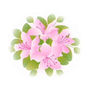 春の花/ツツジ/無料イラスト素材 - 花/素材/無料/イラスト/素材【花素材mayflower】モバイル/WEB/SNS
