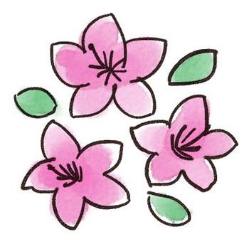 ツツジのイラスト(花): ゆるかわいい無料イラスト素材集