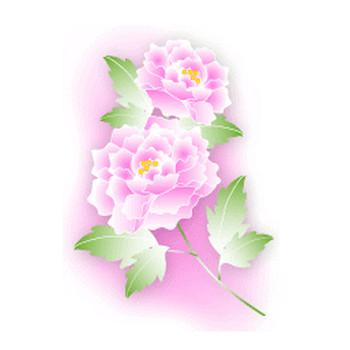牡丹の花の無料イラスト素材 - 花/素材/無料/イラスト/素材【花素材mayflower】モバイル/WEB/SNS