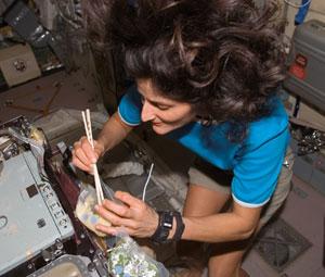 NASA - Sunita Williams' Mission Log