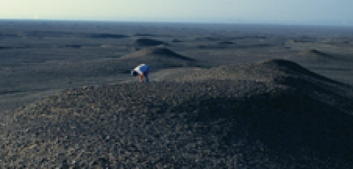 Organismi terrestri estremi - Il principale investigatore Kimberley Warren-Rhodes esamina il fondo desertico per i cianobatteri nello Xinjiang, in Cina.