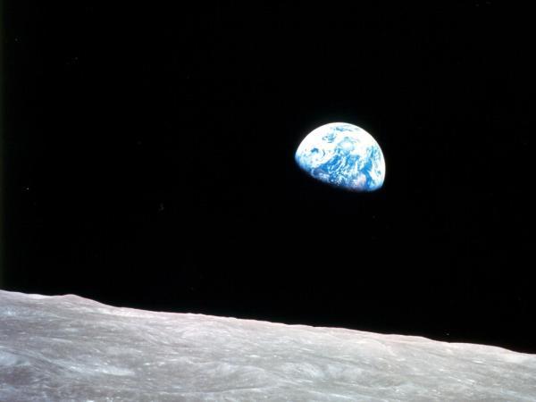NASA - NASA Plants Historic Moon Tree in Celebration of ...