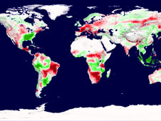 A snapshot of Earth's plant productivity in 2003 shows regions of increased productivity (green) and decreased productivity (red).