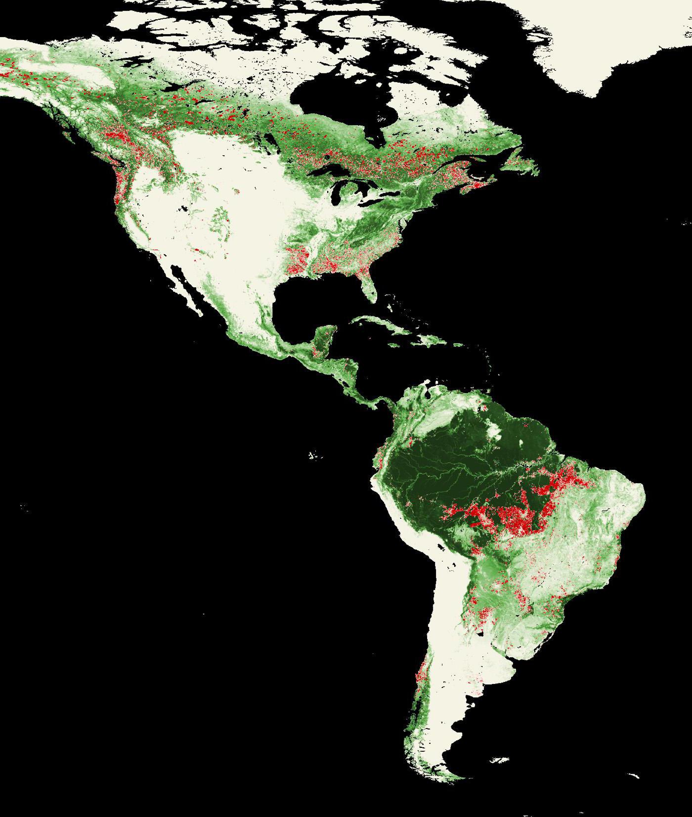 Landsat Top 10 International Deforestation Patterns In