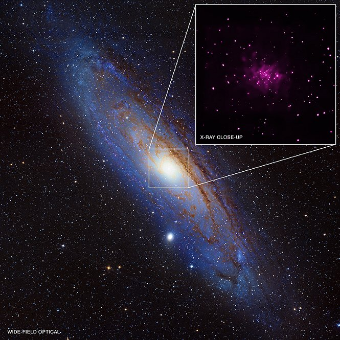 Data from the NASA Chandra Xray Observatory has been used to discover 26 black hole candidates in Andromeda, the galactic neighbor to the Milky Way.