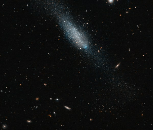 Hubble Sees Cosmic Sprinkling of Blue and Gold | NASA