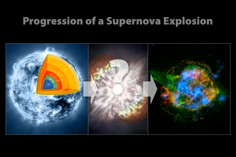These illustrations show the progression of a supernova blast.