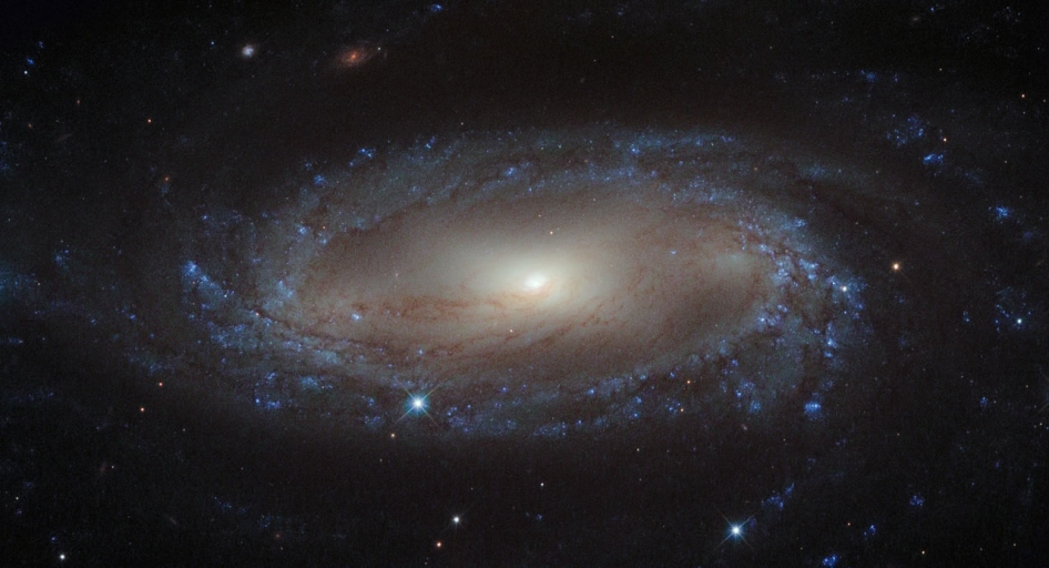 Delicate spiral galaxy with a flat disc center