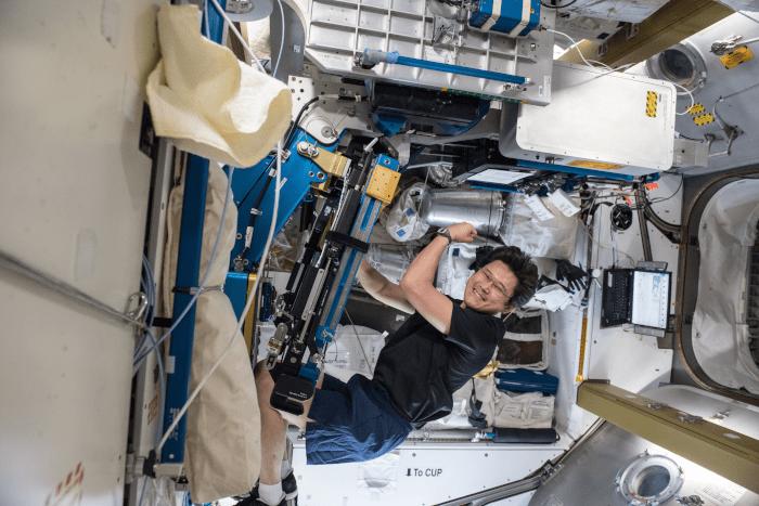 astronaut Norishige Kanai using the Advanced Resistive Exercise Device