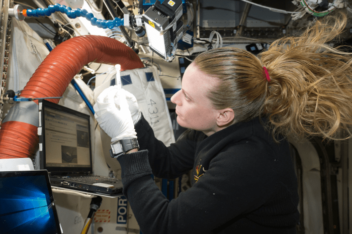 Astronaut Kate Rubins prepares the Biomolecule Sequencer experiment