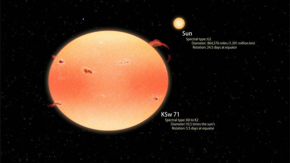 """Ilustración de artista que muestra una comparación entre la más extrema de las """"estrellas calabaza"""" encontradas con Kepler y Swift y el SOl. Ambas estrellas se muestran a escala. KSw 71 es mayor, más fría y más roja que el Sol y gira cuatro veces más rápido. El giro hace que la estrella se aplane y tome forma de calabaza, con polos más brillantes y un ecuador más oscuro. La rotación rápida también produce niveles mayores de actividad estelar como manchas estelares, fulguraciones y prominencias, produciendo una emisión en rayos X 4000 veces más intensa que la emisión máxima del Sol. Se piensa que KSw 71 se formó recientemente, después de la fusión de dos estrellas de tipo similar al Sol que formaban en un sistema binario cercano. Crédito: NASA's Goddard Space Flight Center/Francis Reddy."""