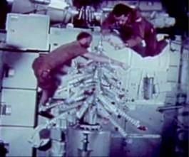 skylab_4_crew_trimming_christmas_tree