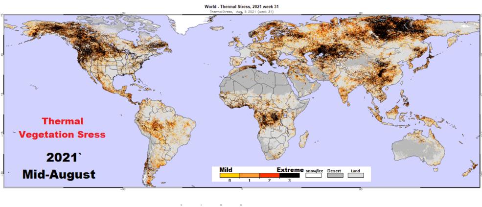 VHI map thermal stress