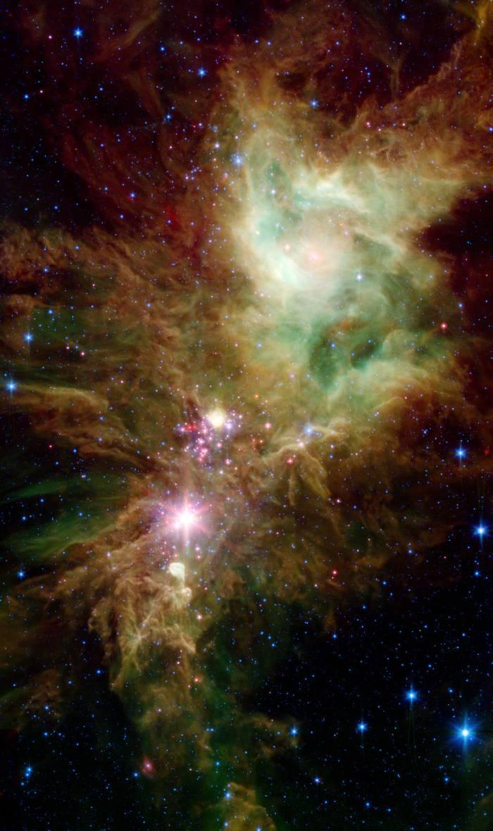 Stellar Snowflake Cluster