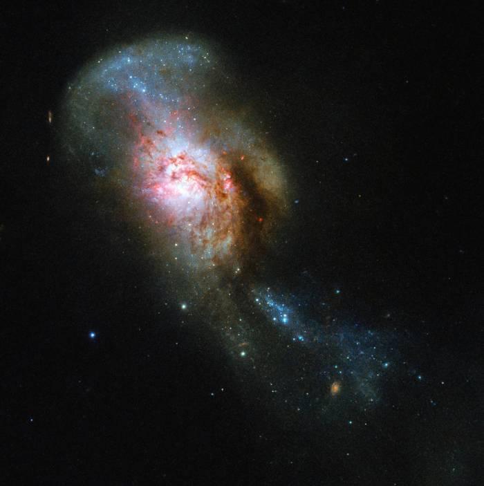 NGC 4194, the Medusa merger