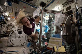 astronaut Kate Rubins working inside the LSG