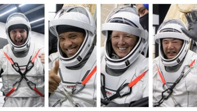 NASA's SpaceX Crew-1 Astronauts to Answer Questions after Return – NASA