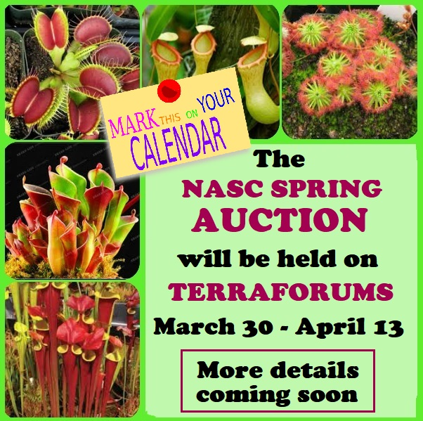 Spring Auction 2019