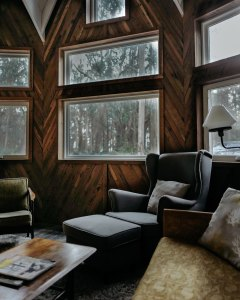 A view through wood-paneled window of a forest