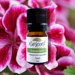 A 5 milliliter bottle of Geranium essential oil in front of a photo background of a Geranium flower