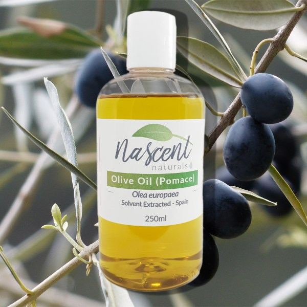 A bottle of Olive Oil (Pomace) carrier oil in front of a photo background of an olive branch